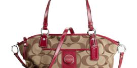 Handbag Repair